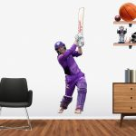 George Bailey Hobart Hurricanes
