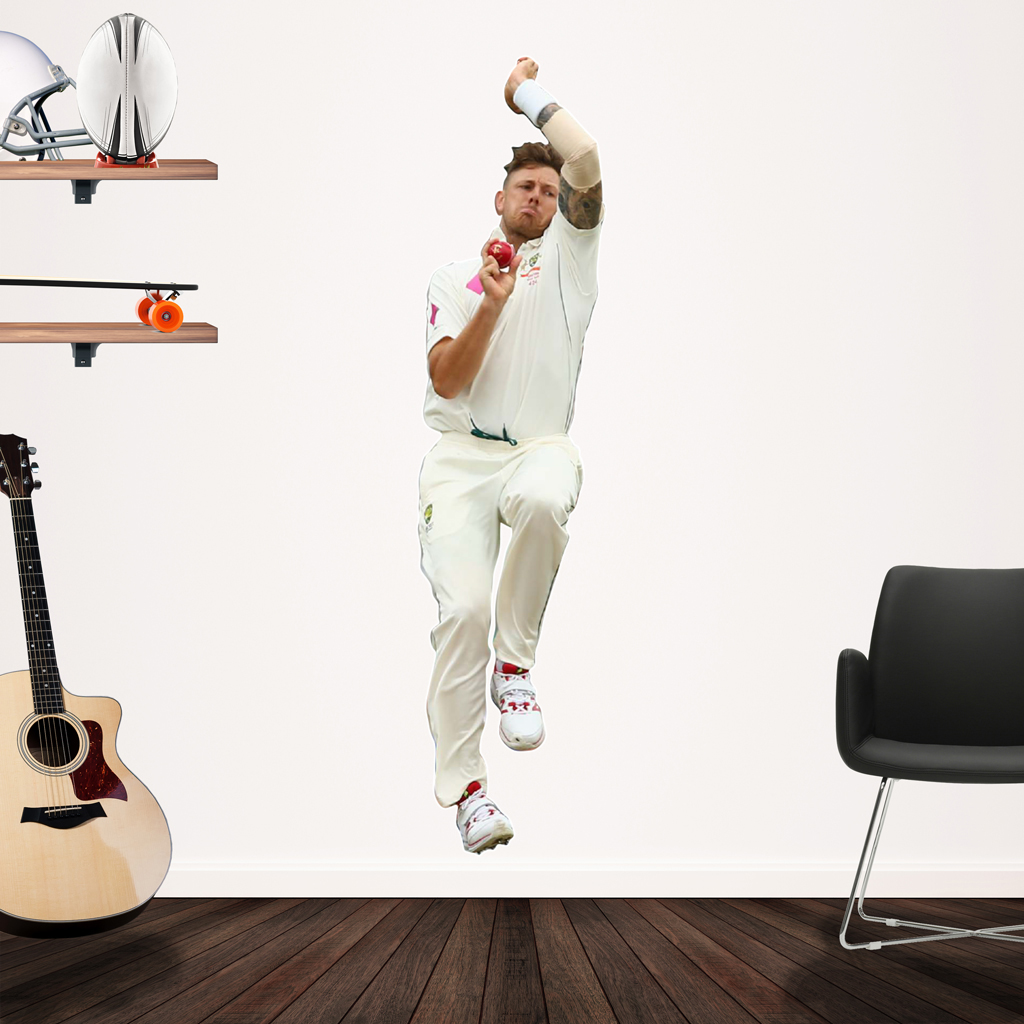 James Patterson Bowling in Test Cricket Popout decal