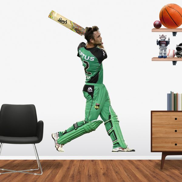 Glenn Maxwell playing in the BBL for the Melbourne Stars Popout decal.