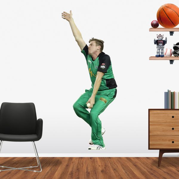 James Faulkner playing in the BBL for the Melbourne Stars Popout decal.