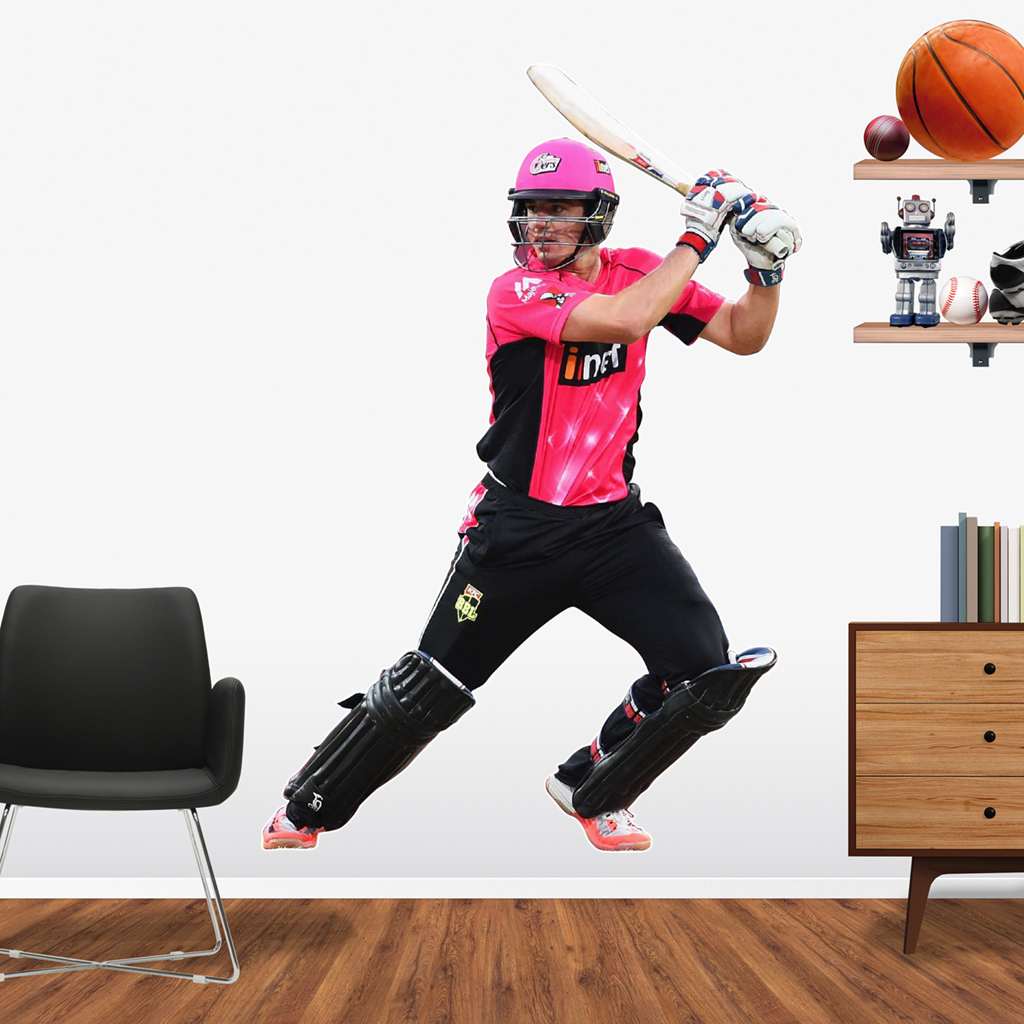 Moises Henriques playing in the BBL for the Sydney Sixers Popout decal.